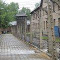 Visita-Auschwitz-viajohoy168 Visita a Auschwitz