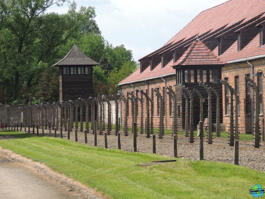 Visita-Auschwitz-viajohoy54 Visita a Auschwitz