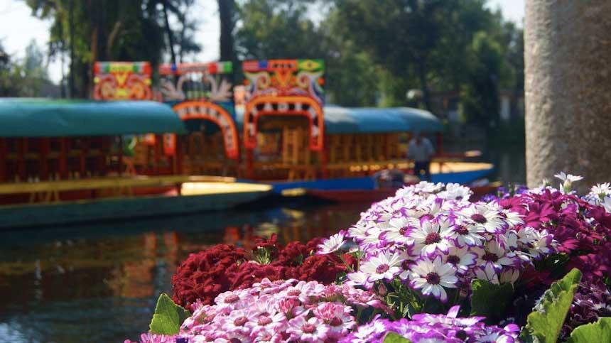 Una Venecia florida – Visita Xochimilco
